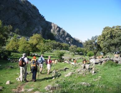 Wandelen door het Natuurpark Grazalema